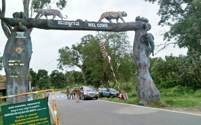 Mysore Jungle Tour