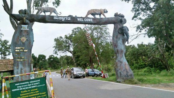 Mysore Jungle Tour